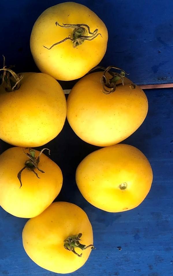 Garden Peach Tomatoes