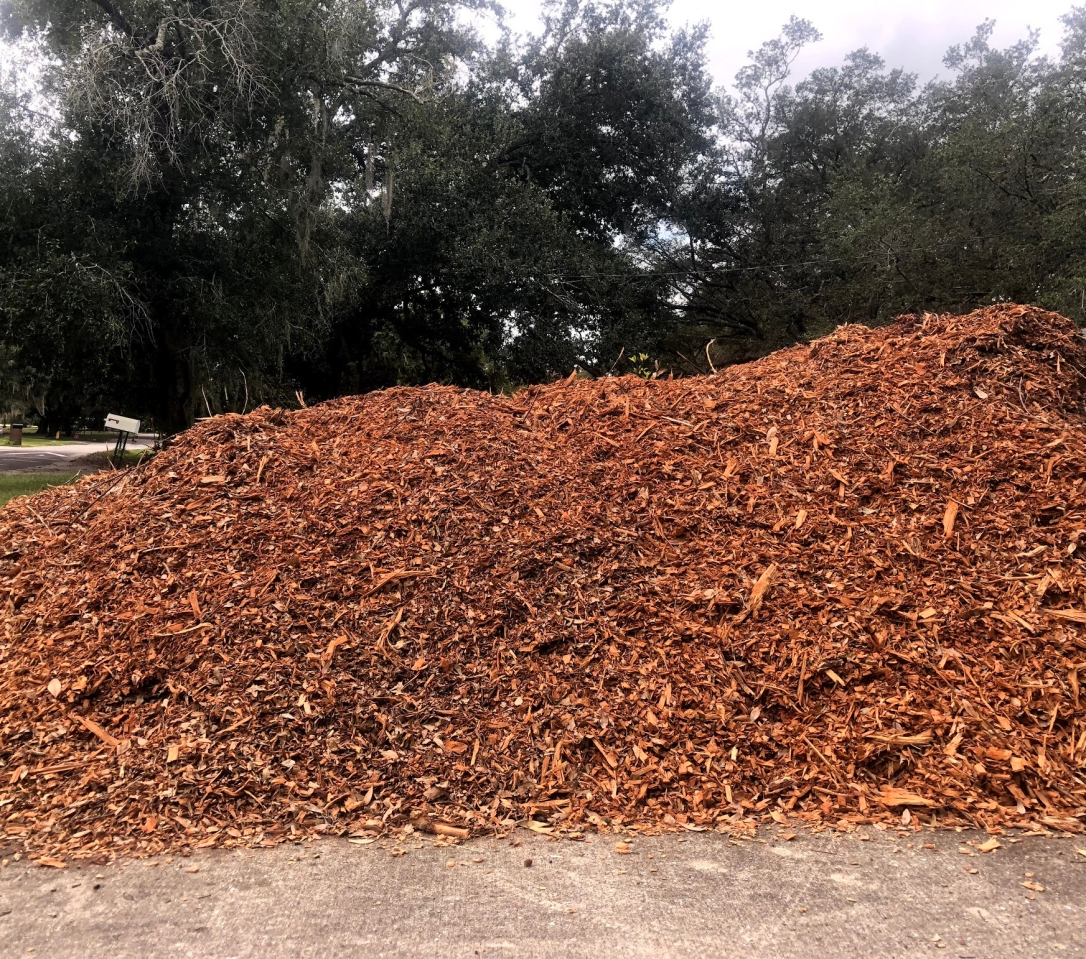 Mulch from Chip Drop
